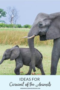 Mother elephant and baby elephant walking